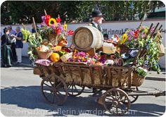 Trachtenumzug und Winzerfest in Auggen – Teil 1
