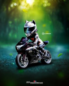 Artwork for MotoKitties - Cat Ear Motorcycle Helmet Moto Bike, Motorcycle Garage, Motorcycle Helmets, Cat Valentine Victorious, Sam And Cat, Bike Photography, Cute Baby Cats, Biker Girl, Celebrity Dads