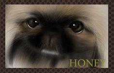 My works Pekingese portraits 愛犬ペキニーズと、 そのお友達の似顔絵・肖像画.