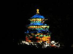 Chinese Lantern Festival Missouri Botanical Garden Chinese Lantern Festival, Missouri Botanical Garden, Chinese Lanterns, All Pictures, Christmas Tree, Feelings, Holiday Decor, Nature, Photography