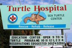 Turtle Hospital in The Florida Keys | http://wanderthemap.com/2014/07/turtle-hospital-florida-keys/