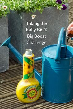 4. Taking the Big Boost Challenge with Baby Bio