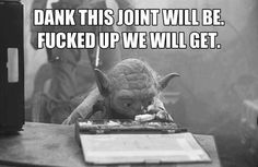 Yoda knows what's up.