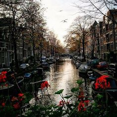 The best places in the world to spend #Christmas - like #Amsterdam - will put you in the spirit to travel this holiday. Photo courtesy of ravenreviews on Instagram.
