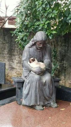 Cat resting on Jesus's arms. #jesuschrist #Cats