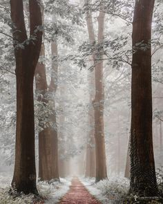 """Silver Lane - Best Seen on Black, hit the M <a href=""""http://larsvandegoor.com/products/"""">
