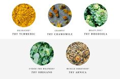 Meet superherbs, the new essentials for your medicine cabinet