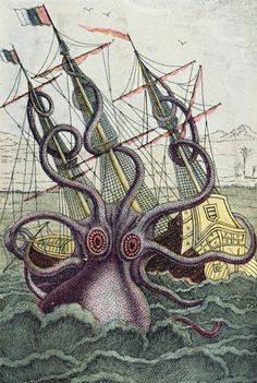 Giant Octopus Painting by Denys Montfort - Giant Octopus Fine Art Prints and Posters for Sale