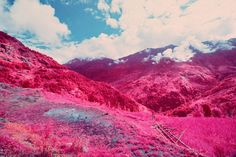 Infrared Photographs of Nepal Look Like Something Out Of  A Dr. Seuss Book