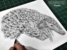 Pangolin progress pic #4. Drawn with a Zoom L105, Ballpoint Pen