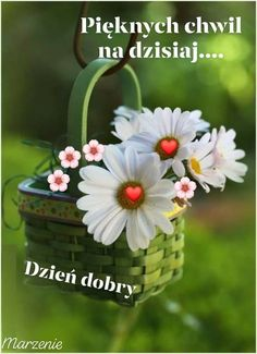 Good Morning, Humor, Plants, Inspiration, Motto, Buen Dia, Biblical Inspiration, Cheer, Bonjour