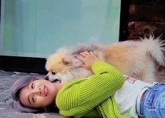 Park Ji Min, Please Love Me, Bts Gifs, Kpop, Bts Photo, Mochi, Bts Jimin, Boy Bands, Twitter