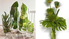 folhas de costela de adao no vidro para decorar - Pesquisa Google