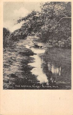 "The ""Rapids"" weren't very rapid along Miami River in Florida, circa 1905."