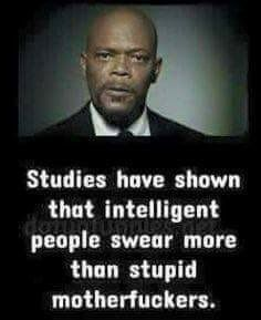 Studies have shown that intelligent people swear more than stupid motherfuckers, damn I must be smart because cuss words flow out of my mouth all the days Funny As Hell, Haha Funny, Funny Jokes, Funny Stuff, Funny Shit, Hilarious, Funny Wife, Funny Humour, Dad Humor