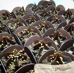 Ó my God!!Brownie de chocolate<3<3