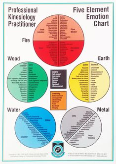 The colourful chart of the complete list of 5 Element Emotions used in the PKP system. Useful as a scanning chart in size and also available in size as a wall chart. Heart Circulation, Element Chart, Mudras, 5 Elements, Fifth Element, Traditional Chinese Medicine, Ayurveda, Alternative Medicine, Reiki