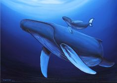 We bought a Wyland Whale Tail painting on our honeymoon nearly 12 years ago and we still love it!