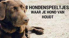 Benieuwd van welke #hondenspeeltjes jouw #hond houdt? Bekijk het nu bij https://gadgetstogive.nl
