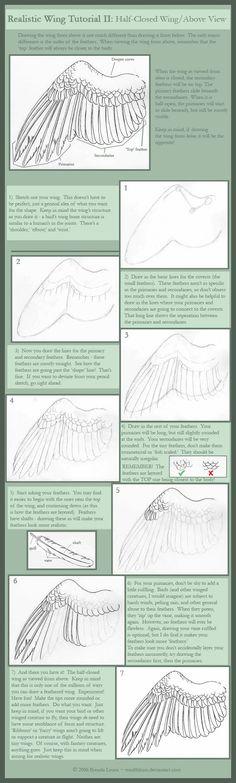 Como desenhar asas de anjos, morcegos, pássaros etc... é tudo igual, o principio é o mesmo, e os erros cometidos também.   Veja só as imagen...