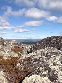 View from top of Levi. Lapland, Finland Photo by Virpula