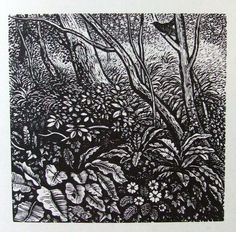 REYNOLDS STONE wood engraving. Garden at Litton Cheney. 1960 Lino Cuts, Wood Engraving, Wood Blocks, Colored Pencils, Zentangle, Flower Art, Printmaking, Countryside, Illustrators