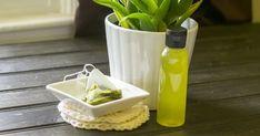 Homemade Green Tea & Aloe Skin Toner To Tighten Pores, Remove Excess Oil & More Aloe On Face, Toner For Face, Skin Toner, Facial Toner, Organic Skin Care, Natural Skin Care, Natural Beauty, Natural Facial, Natural Hair
