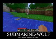 Minecraft - Submarine-Wolf♢ Minecraft Comics, Minecraft Funny, Amazing Minecraft, How To Play Minecraft, Minecraft Houses, Minecraft Stuff, Cool Pictures, Funny Pictures, Minecraft Creations