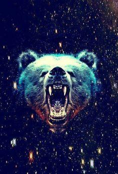 Hipster bear wallpaper