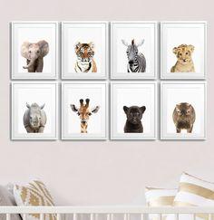 Set of 8 Safari Animal Prints, Lion, Tiger, Giraffe, Elephant, Rhino,  Hippo, Leopard, Nursery Decor, Kids Room Decor, Baby Shower Gift Idea, Safari Prints,