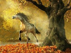 """""""Mustang Autumn""""  Near a lake surrounded by forest, a #mustang gallops past a mossy oak tree.  #Autumn has come and the forest is full of fall color.  Everything but the moss seems to have turned bright red, yellow, and orange.  The horse has a buck skin and white paint (or pinto) coat, but has a dark mane, tail, and fetlocks.  A ray of sunlight has broken through the forest canopy and illuminates the wild #horse."""