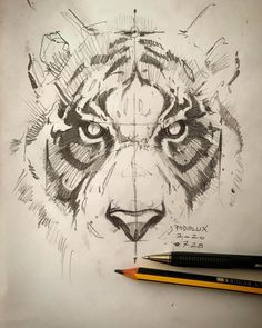 by psdelux Le Cri, Ballpoint Pen, Pencil Drawings, Tatting, Instagram, Sketching, Ps, Art Ideas, Tigers