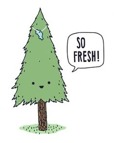 that pine tree smell.