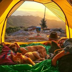 Camping with the whole family #camping #hiking #outdoors #tent #outdoor #caravan #campsite #travel #fishing #survival #marmot http://bit.ly/2nHbey1
