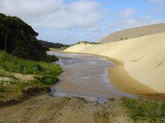 Sanddünen, Kauri-Wälder und Kiwi Watching auf der Nordinsel