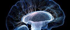 InfoNavWeb                       Informação, Notícias,Videos, Diversão, Games e Tecnologia.  : Epilepsia e nervo vago: 7 informações que você pre...