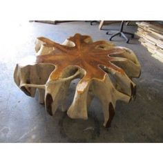 Teak Wood Root Coffee Table: