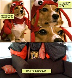 if dogs were comic-book heroes...