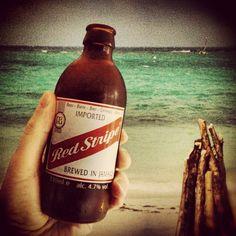 Jamaica Mon...