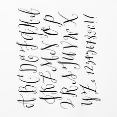 modern calligraphy alphabet - Google Search