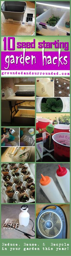 Be creative and get your garden on….IT'S TIME TO GROW! These 10 Seed Starting Garden Hacks will help you reduce, reuse, & recycle in the garden.