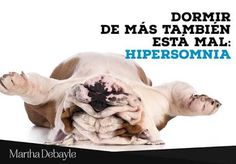 Resultado de imagen para hipersomnia