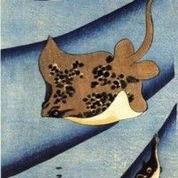 歌川国芳の描く「エイ」。こういうのも描いてたんですね。 : Japaaan Stingray Date: c. 1837 Tsujioka-ya Bunsuke