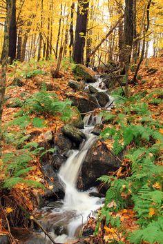 Londonderry, Vermont