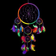"Caught Dreams Dream Catcher ~ Traditional Rainbow Multi Color with Feathers 8.5"" Diameter & 24"" Long!"
