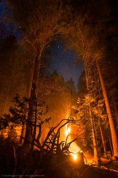 disminucion:  Forest Fire Under Starry Sky, Sean Duggan