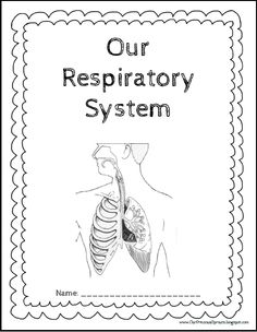 4 Days of Respiratory System Lessons for kids. Includes