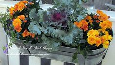 For the First Day of Fall - switched out the IKEA window boxes hanging…