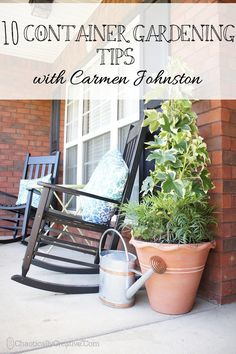 10 Container Gardening tips from A PRO