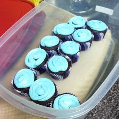 Chocolate cupcakes with UNC icing